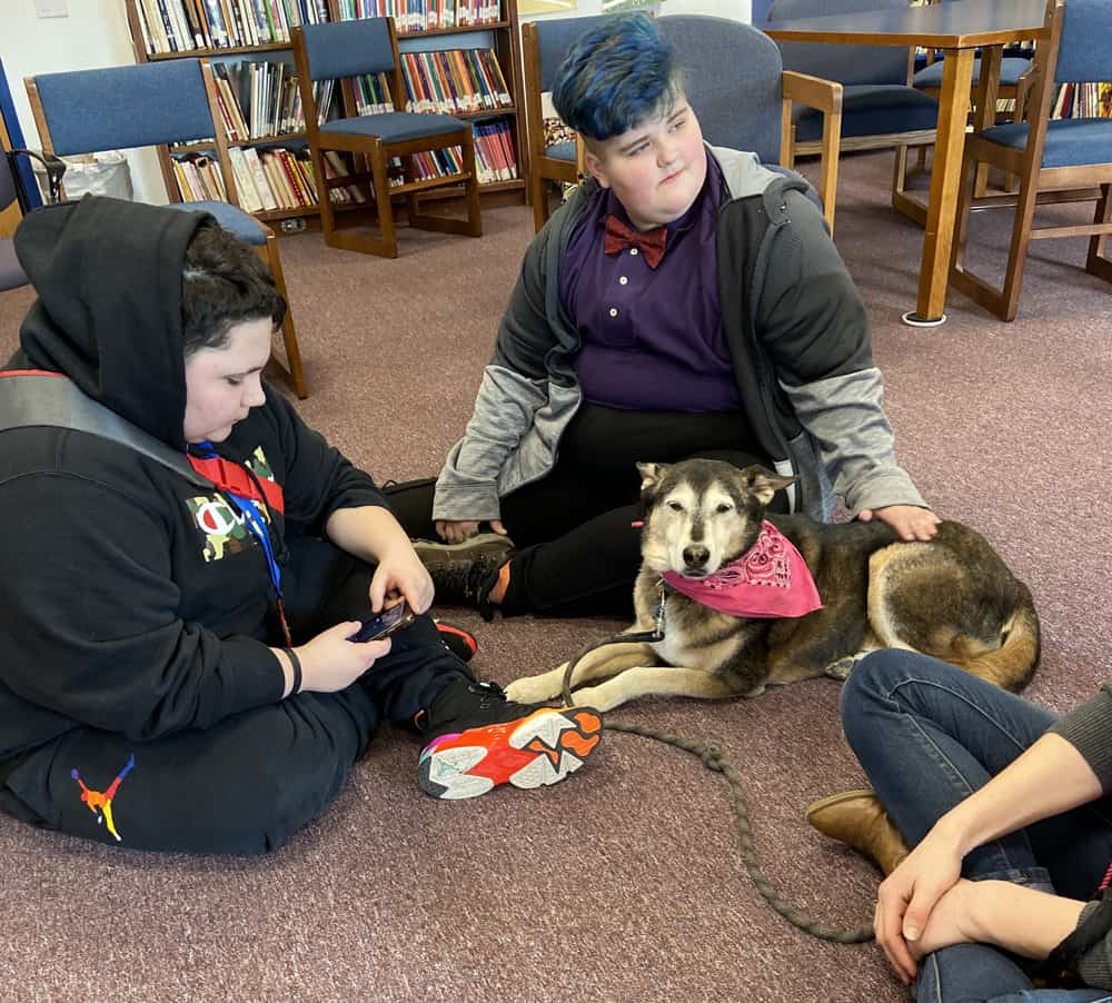 Therapy Dog Visits Pathway